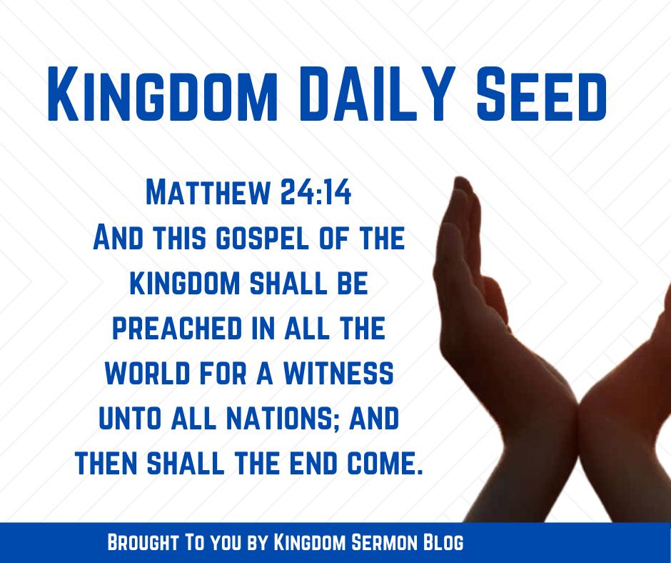 KINGDOM DAILY SEED